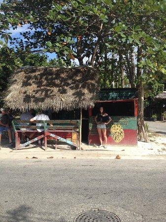Ras Rody's Roadside Organic: Delicious Authentic Jamaican Food!