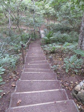 Aqua Wellness Resort: Stairs during the day