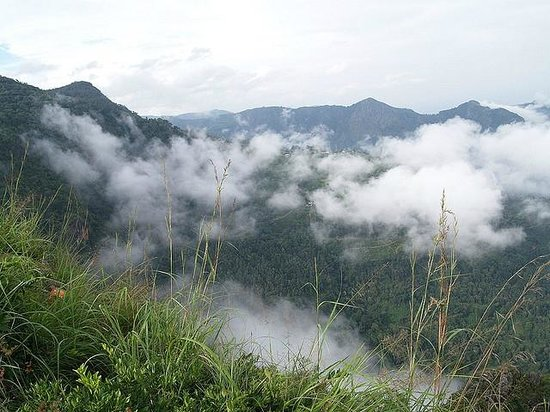 Gudalur India  City new picture : Gudalur, India: view