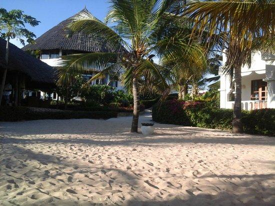 Jacaranda Beach Resort : Jacaranda