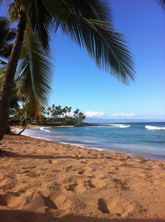 The Mauian Hotel on Napili Beach : Hotelstrand