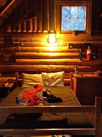 Little Lyford Lodge and Cabins : Gray Ghost