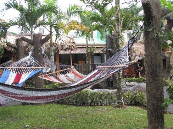 Arenal Hostel Resort: les hamacs avec la piscine et le bar derrière