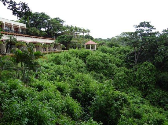 Ocotal Beach Resort: Natural Landscape
