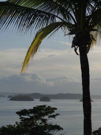 Ocotal Beach Resort : What a View!