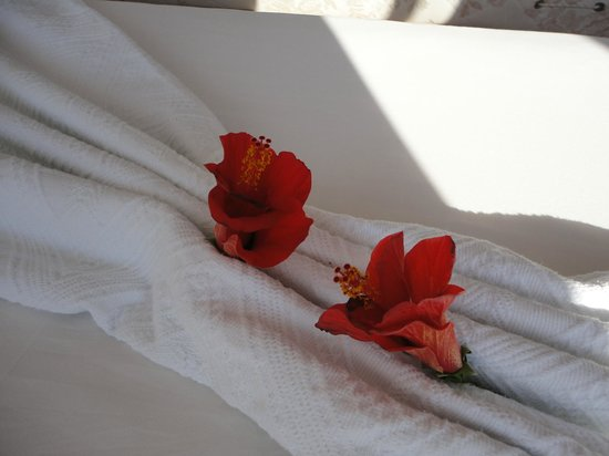 Ceylan Apart : flowers on the bed