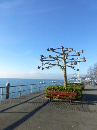 Gasthof Rebstock: Friedrichshafen