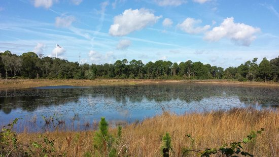 The Westin Lake Mary: The Marsh overlook - 2 miles on the Florida Trail