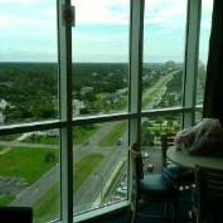 Avista Resort: Living Room view in daytime in Rm Type LNS