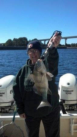 About Fun Charters: Just one of many black drum