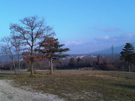 Carso Triestino - Parco Globojner
