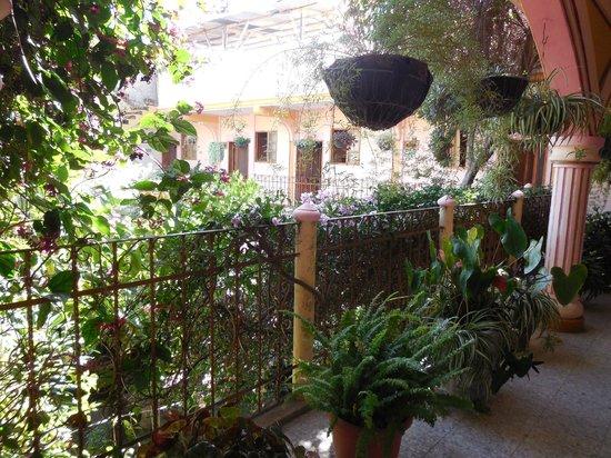 Hotel El Chaparral: Courtyard