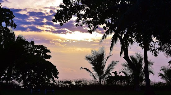 Blue Osa Yoga Retreat and Spa: beautiful view