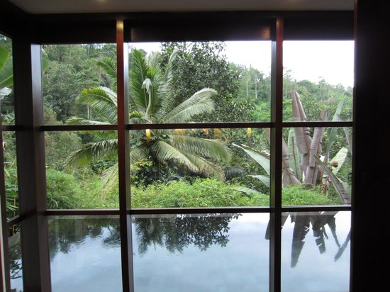 Hanging Gardens of Bali: view of the personal infinity pool and the jungle beyond from the bed