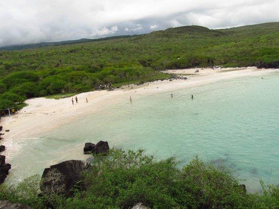 Puerto Chino Beach : Una playa en bahia para disrutar