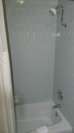 BEST WESTERN PLUS Royal Oak Hotel : Shower
