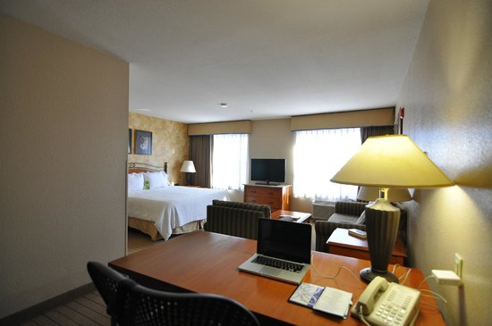 Hilton Garden Inn Phoenix Airport: King bed room