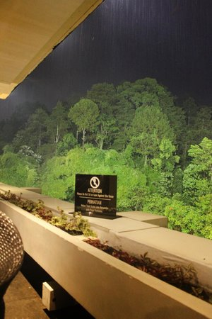 Padma Hotel Bandung: If dining at night, the forest becomes hauntingly good, especially when fog appears