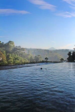 Padma Hotel Bandung: View from pool