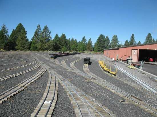 Train Mountain Railroad Museum: one of many yards