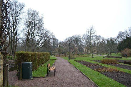Botanical Gardens (Botaniska Tradgarden): Botanical Garden - 16/12/2013