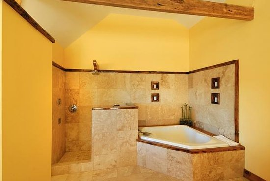 The Rhinecliff: Suit jacuzzi