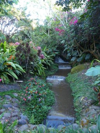 Xandari Resort & Spa : Walk route going to the waterfalls