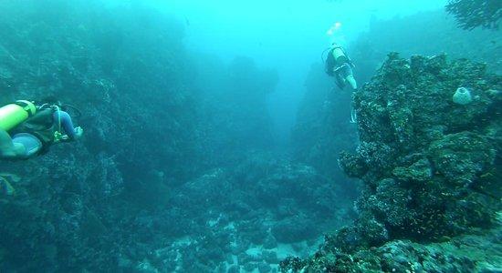 Rubiah Tirta Divers: The Canyon