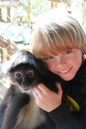 The Jungle Place - Tours: lots of cuddles with the monkeys :)