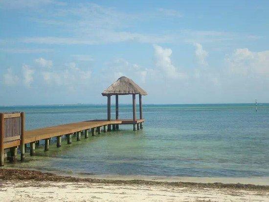 Occidental Costa Cancun: bord de la plage