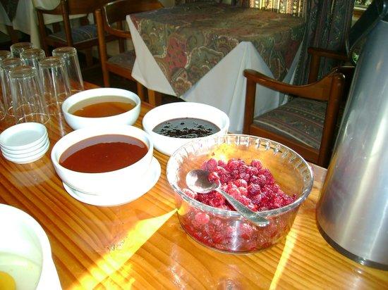 Hotel & Spa Araucarias: Café da manhã
