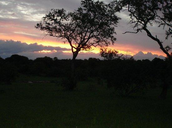 Elephant Plains Game Lodge : Sunset!