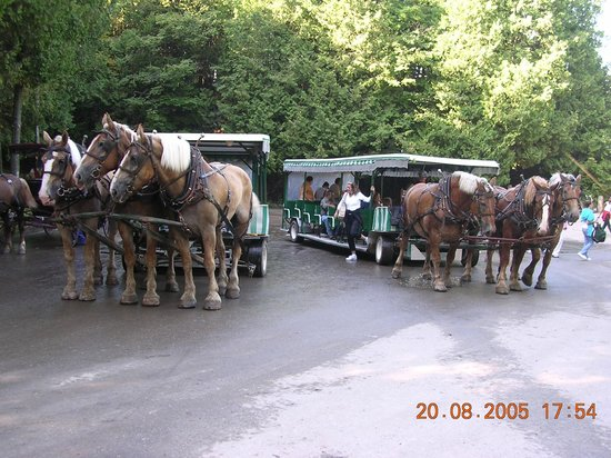 Mackinac Island State Park: Horse Carriages