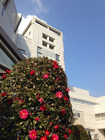 JMS Aster Plaza Hiroshima International Youth House : winter, outside 冬の建物外観
