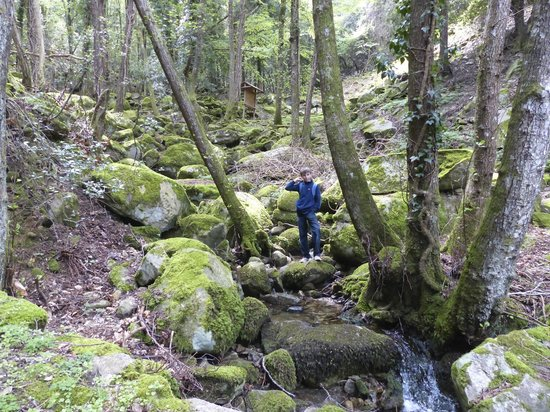 Monte Capanne: road to Monte Cappane