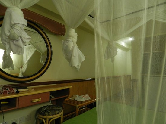 Impala Hotel : Mosquito nets
