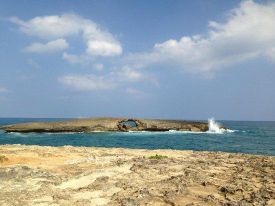Discover Hawaii Tours: La'ie Point