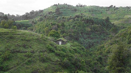 Bwindi Backpackers Lodge: View en route