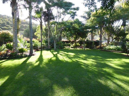 Pawhaoa Bay Lodge: Garden