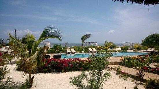 Next Paradise Boutique Resort: Pool und Meer