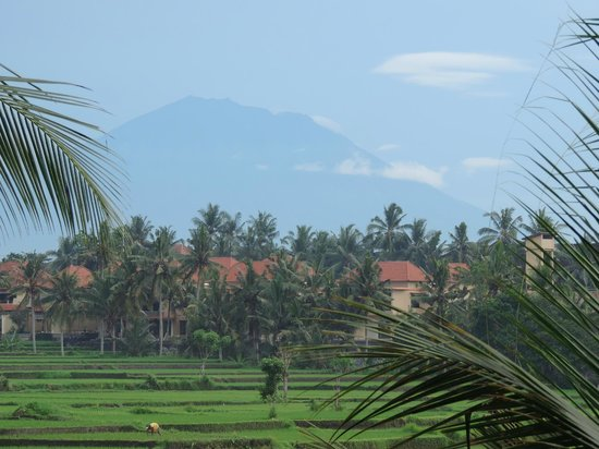 Alam Jiwa: Upstairs view