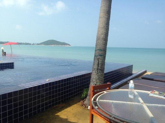 Lipa Bay Resort : View from the restaurant
