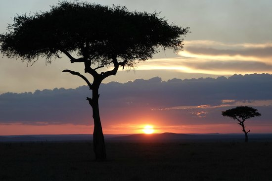 Sarova Mara Game Camp : Masai Sunset