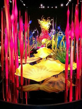 Chihuly Garden and Glass : Chihuly Garden of Glass