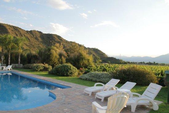 Vinas de Cafayate Wine Resort: Poolview over the wine estate