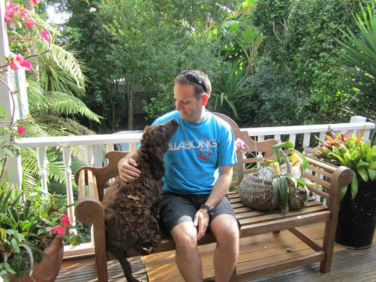 Peace and Plenty Inn : Relaxing with the resident dog, Cooper, on the verandah.