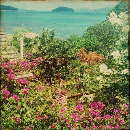 Chalets Cote Mer: The garden