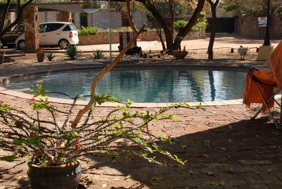 Mokolodi Backpackers: The tranquil pool area.