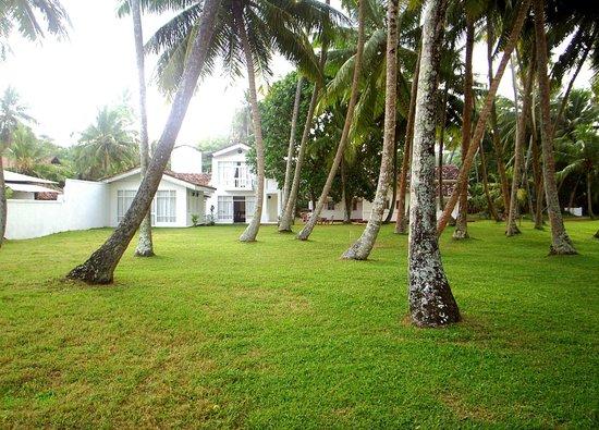 Chitra Ayurveda: LuckWin Villa from coconut garden...