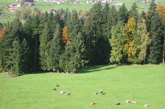 Photo of Rossbad Kur-und Gesundheitshotel Krumbach